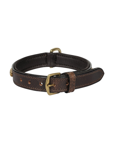 Leather Dog Collar Brown with Gold Conchore Decoration-SMALL-2