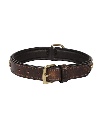 Leather Dog Collar Brown with Gold Stones Decoration-MEDIUM-2