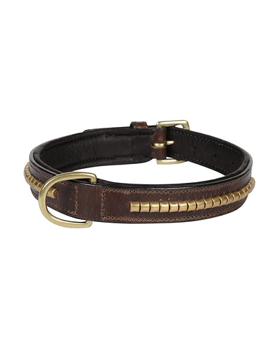 Leather Dog Collar Brown with Gold Conchore Decoration-AMA-DC04-M