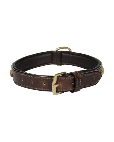 Leather Dog Collar Brown with Gold Conchore Decoration-MEDIUM-2