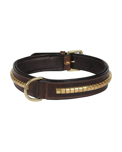 Leather Dog Collar Brown with Gold Conchore Decoration-AMA-DC04-L