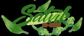 Satvik-logo