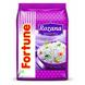 Fortune Basmati Rice - Rozana-SKU-Rice-061-sm