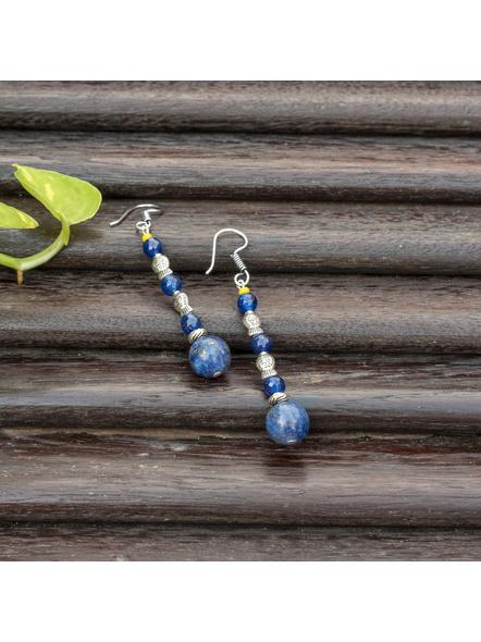 Handmade Semi Precious Fish Earring Design 6-LAAER449