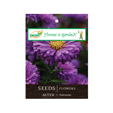 ONCROP ASTER SEEDS-EO1137