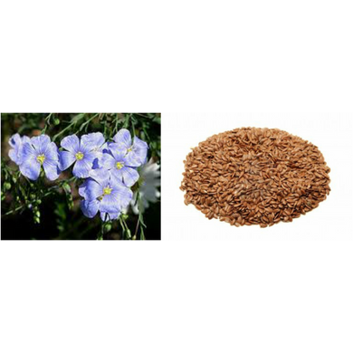 SC FLAX SEED PURE & NATURAL-EO1778