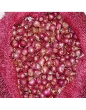 veg Onion Sambar