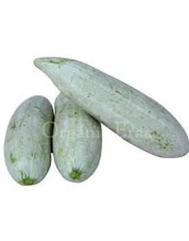 veg GOURD - SNAKE GOURD