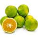 FRUIT MOSAMBI (SWEET LIME)-EO606-sm