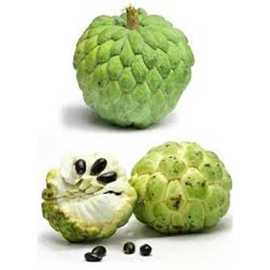 FRUIT CUSTARD APPLE-Fruit-32-1k