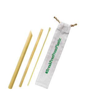 Bamboo Straw Complete Set + Canvass Pouch