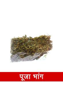 Pooja Bhang