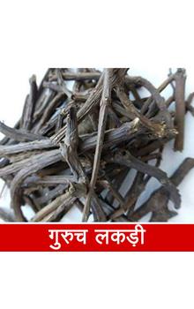 Guruch Lakadi