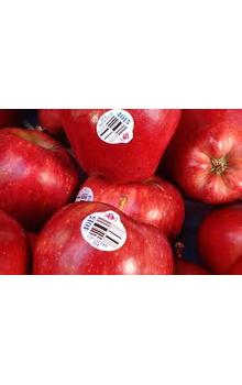 Fresho Apple - Red Delicious/Washington, Regular, 4 pcs (Approx. 530g - 640g)    Apple - Red Delicious/Washington, Regular, 4 pcs (Approx. 530g - 640g)