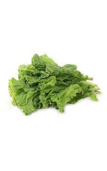 Lettuce - Green, 70 to 100 gm (Bunch)