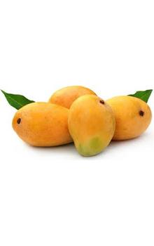 Alphonso Mango - Ratnagiri, 6 pcs