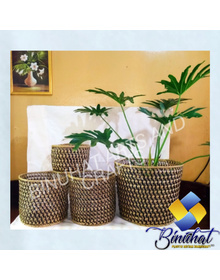 Set Indoor Flower Pot