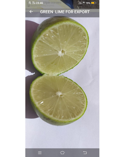 Lemon-6033860