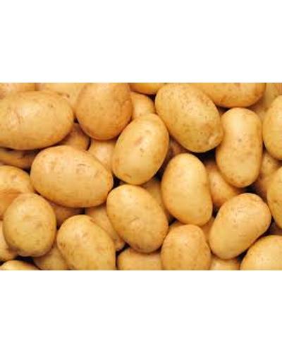 Potato-6046152