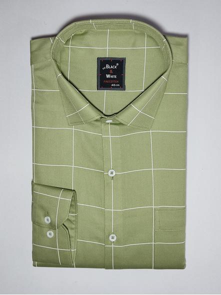 Black & White Men Olive Green Checked Reglar Fit Formal Shirt-FSOG-1