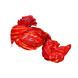 S H A H I T A J Traditional Rajasthani Jodhpuri Cotton Farewell/Retirement/Social Occasions Red Lehariya Pagdi Safa or Turban for Kids and Adults (CT710)-18-3-sm