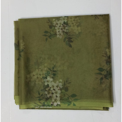 S H A H I T A J Light Green Floral Barati/Groom/Social Occasions Organza Silk Pagdi Safa Turban or Pheta Cloth for Kids and Adults (CT786)-ST908