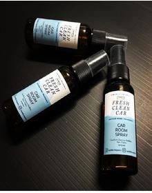 Fresh Clean Car Fragrance Spray