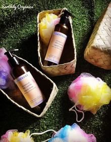 Earthily Lavender Pili Liquid soap set