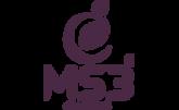 MS3 AGRI-VENTURES CORP-logo