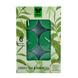 Iris Aroma Wax Candles Green, Set of 6-2-sm