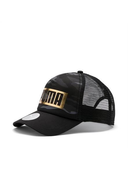 PUMA 021713 CAP-1