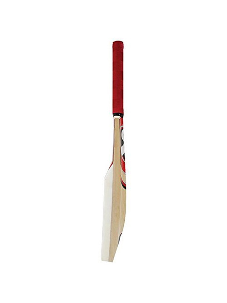 SG CATCH BAT. CRICKET ACCESSORIES (Colour may vary)-FS-2