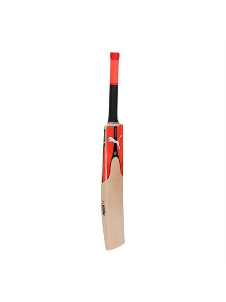 Puma 053358 English Willow Cricket Bat-1 Unit-SH-2