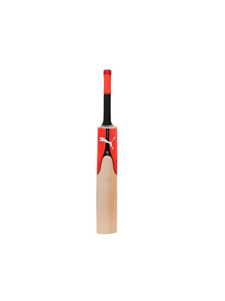 Puma 053336 English Willow Cricket Bat-1 Unit-HARROW-1