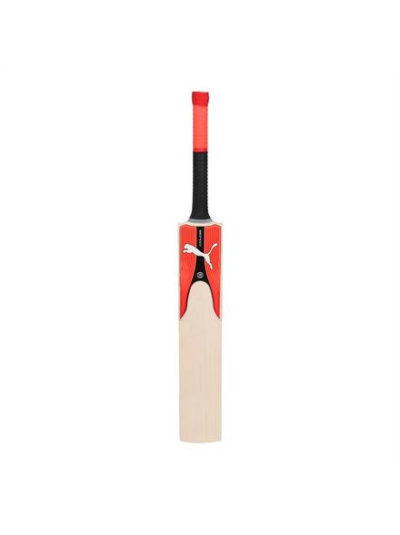 Puma 053339 English Willow Cricket Bat-1 Unit-SH-1
