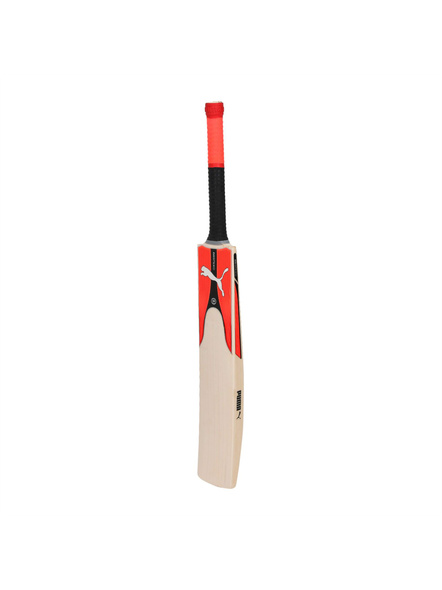 Puma 053339 English Willow Cricket Bat-1 Unit-SH-2