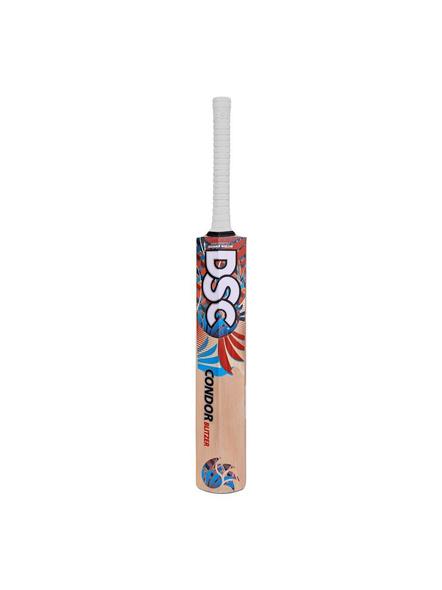 Dsc Condor Blitzer Kashmir Willow Cricket Bat (colour May Vary)-1 Unit-SH-1
