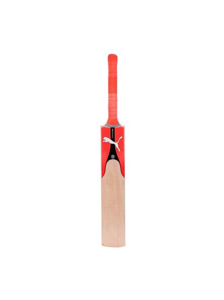 Evospeed Kw 2 Kashmir Willow Cricket Bat(colour May Vary)-1 Unit-HARROW-2