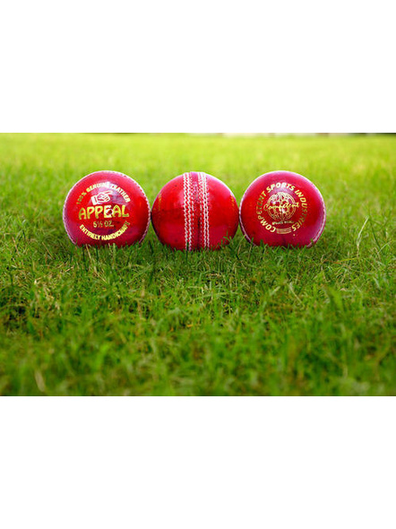 Competent Appeal Season Ball-9931