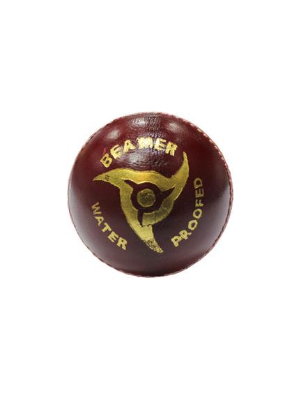 Grasshopper Beamer Cricket season ball-RED-1 Unit-1