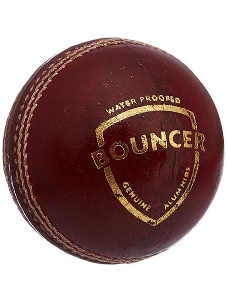 Sg Bouncer Leather Ball-65