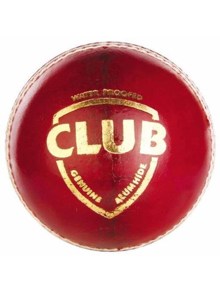 Sg Club Leather Cricket Season Ball-38
