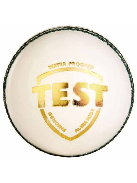 Sg Test Leather Cricket Ball-1968