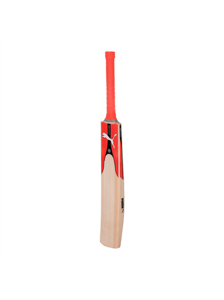 PUMA evoSPEED KW 1 SNR Kashmir Willow Cricket bat (Colour may vary)-21-FS-1