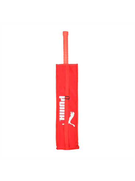 PUMA evoSPEED KW 1 SNR Kashmir Willow Cricket bat (Colour may vary)-21-FS-2