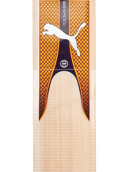 Evospeed Kw 2 Kashmir Willow Cricket Bat(colour May Vary)-4