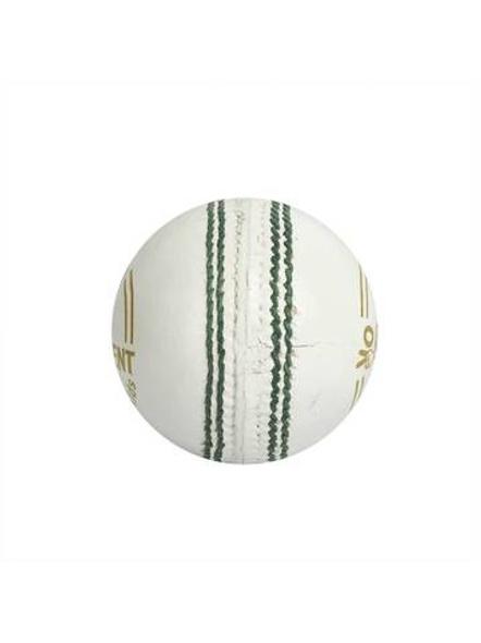 Competent Yo Kids Leather Cricket Ball-Junior-1 Unit-WHITE-1