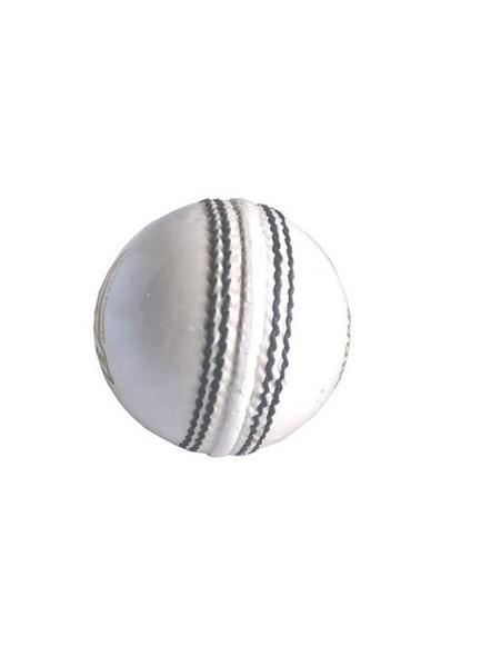 Grasshopper Beamer Cricket season ball-889
