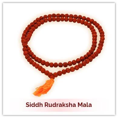 Siddh Rudraksha Mala-177