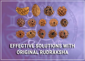 Effective Solutions with Original Rudraksha